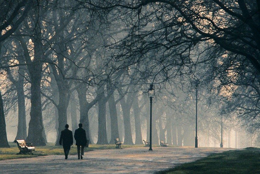 Morning Fog in Hyde Park