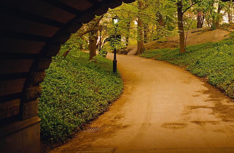 A Clear Path